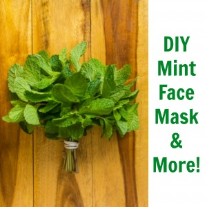 DIY Mint Face Mask & More