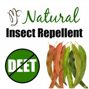 Natural Repellent to Keep Pesky Summer Insects at Bay