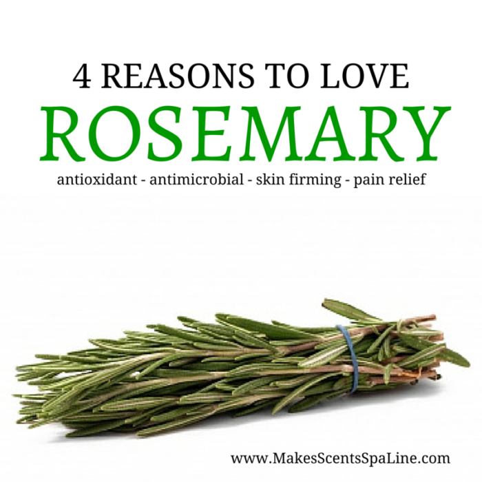 4 Reasons to Love Rosemary - Makes Scents Natural Spa Line