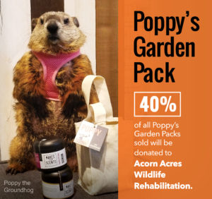 Poppy's Garden Pack | Poppy the Groundhog | Makes Scents Natural Spa Line